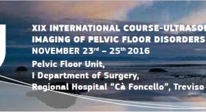 xix_international course_2016