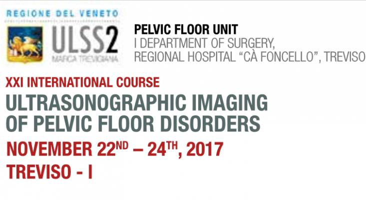 XXI International Course_Ultrasonographic_Imaging_2017